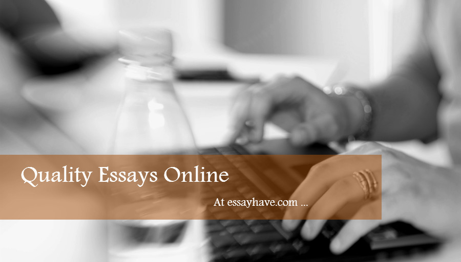 quality essays online at essayhave.com